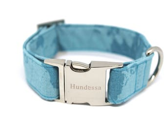 Dog collar with silver clasp