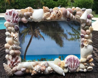Handcrafted coastal sea shell picture frame