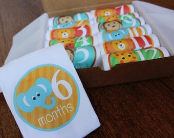 12 Monthly Bodysuits for Baby's 1st Year - Animals
