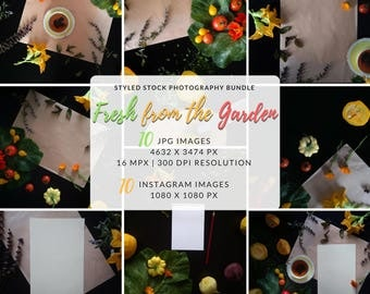 Flat Lay Bundle, Your Design Here, Styled Stock Bundle, Pre Made Scene, Instagram Styled, Instagram Photo Package, A4 Mockup, A4 Blank Page