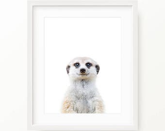 Meerkat Print, Meerkat Wall Art, Nursery Animal, Woodlands Nursery Decor, Meerkat Printable Poster, Meerkat Digital Print Digital Download