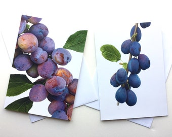 Plums and Damsons greetings cards
