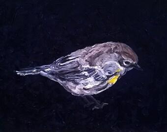 Beautiful Bird Oil Painting