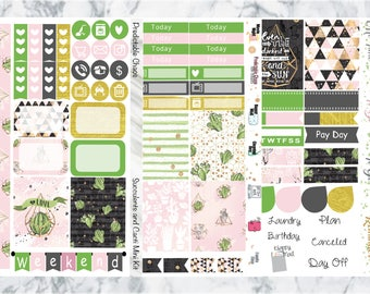 Succulents and Cacti mini kit, planner stickers