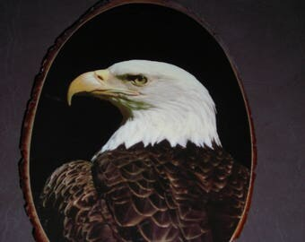 Decoupage Eagle Image On Wood  Grandfather Mountain N.C.