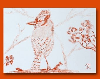 Sketch of a bird on a branch of Japanese cherry