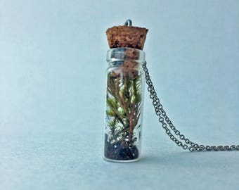 Tiny Terrarium Necklace Lanky & Juniper Cap Moss 1in Cylinder