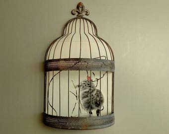 Decorative bird cage wall