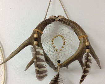 Nesting Antlers Dream Catcher