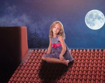 Roof Top Digital Backdrop, Digital Background, Landscape Photography, Moon Photography, Sky Photography, Chimney, Night Photography, Moon