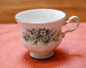 Queen Anne English Bone China Teacup