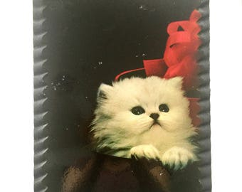 Vintage White Kitten Art