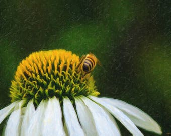 A2, digitised painting of a little flower with a bee on it