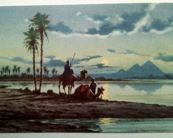 Vintage Postcards from Egypt // 1950's Seafarer Souvenir