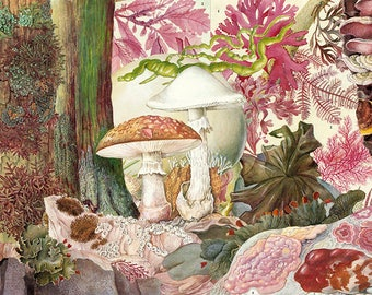 Limited edition giclée print of original collage 'Three; Character Studies in Plant Life'
