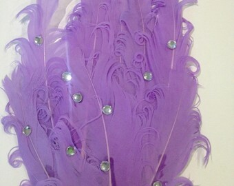 Applique feather and lavender rhinestone 15 cm