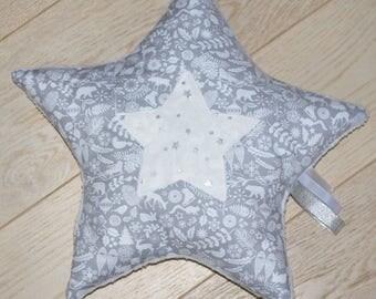 Winter Silver Star cushion