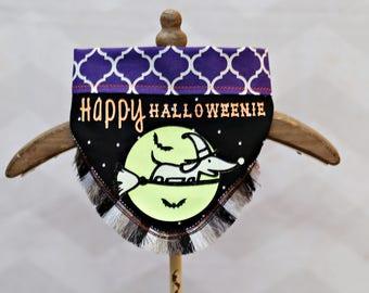 Happy Halloweenie or Howl-Oween Wiener Dog Dachshund Dog Bandana *Glows In the Dark*