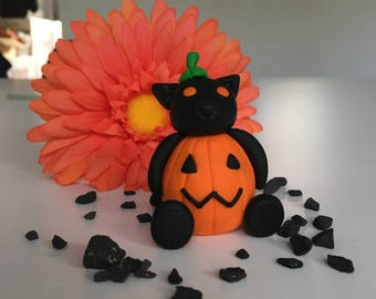 Pumpkin kitty dressup