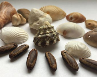 Lot of Natural Beads and Shell beads