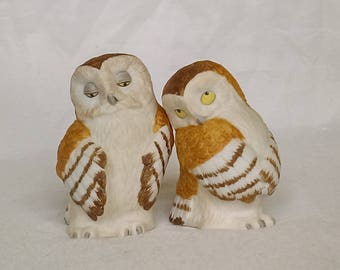 Vintage, Collectable Salt and pepper pot pair. (Owls)