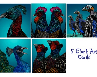 Greeting Cards - Set of 5 Exotic Birds- UK – Fabulous Feathers on Blue – Blank Cards