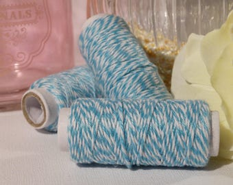 Blue and white twine Baker 20 meters coil