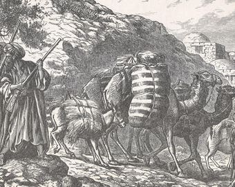 Bringing in the Harvest in Syria, Syria 1885 - Old Antique Vintage Engraving Art Print - Rifles, Camels, Donkeys, Guarding, Harvest