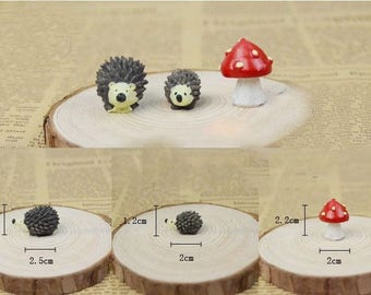 Hedgehog Miniature