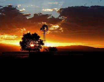 Evening Light 081715