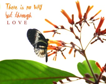 There Is No Way But Through Love