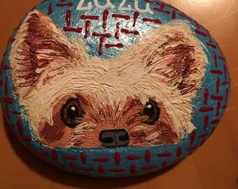 "Custom painted Rock Pet, ""Zuzu"""