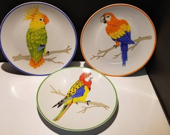 Brightly colored 3 Piece Set of Parrot themed 8 inch Plates