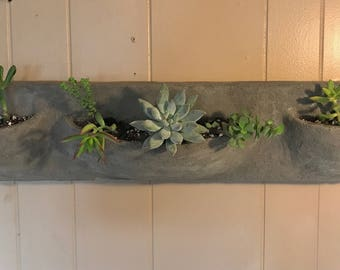 Molded Concrete Wall Planter