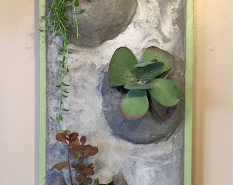 Vertical Concrete Wall Planter
