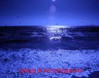 Half Moon Bay 8132
