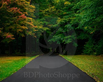 Early Autumn Road | Landscape Photo Art | Nature Lover Gift | Fine Art Photography | Personalization | BDPhotoShoppe | Home Office Decor
