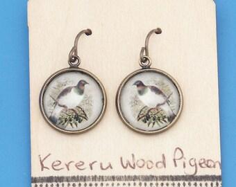 New Zealand Kereru, Wood Pigeon, vintage art print, Earrings, glass dome art, niobium hypo-allergenic