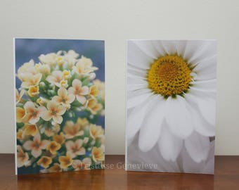 CHOOSE YOUR OWN-Photography Greeting Cards (set of 4)