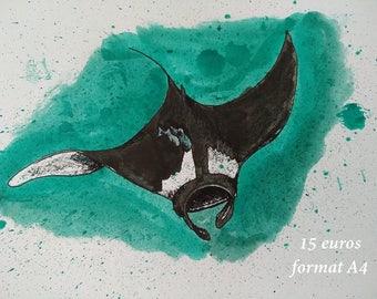 Manta ray ink