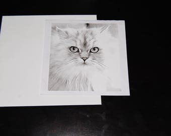 Black and White Watercolor Persian 5x5 Notecard with Envelope