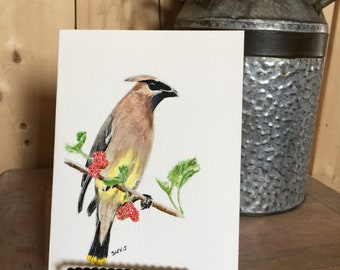 "Original Painting / Card ""Cedar Waxwing"""