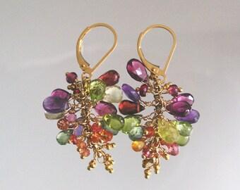 Small Gemstone 14k Gold Filled Tassel Leverback Earrings with Garnet, Sapphire, Peridot, Tourmaline, Amethyst