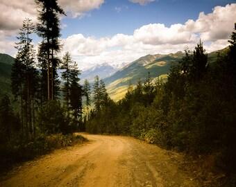 Mountain Photography, Mountain Range, Canada Nature Decor, Nature Photography, Pine Trees, British Columbia, Tamarack Trees, Trees Photo