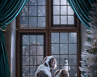 Digital background | Digital backdrop | A Christmas Window | Holiday Window | Window digital background| Snowman | Snow