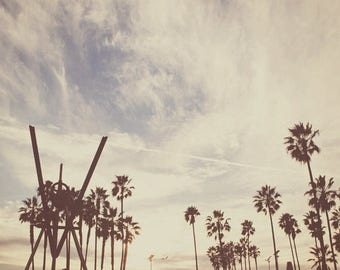 SALE photography, LA photo, Venice Beach photograph, brown, boys room skater surfer, palm trees, California decor, Los Angeles art, blue, fo