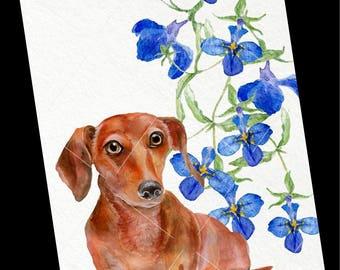 Dog Card-Dachshund Greeting Card-Blank