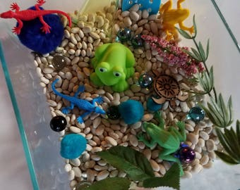 Frogs and Amphibians Sensory Play Bin