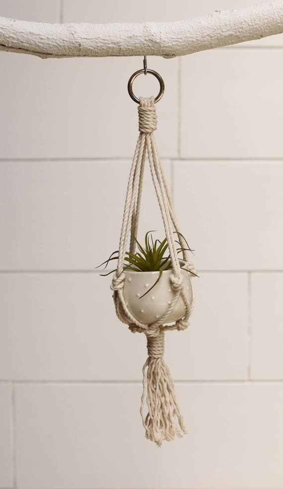 mini macrame plant hanger with container