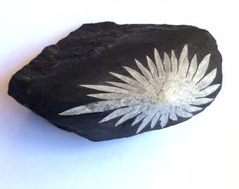Chrysanthemum Stone 3.6 oz Specimen
